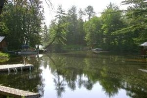 37A Forest Access Rd, Parry Sound Remote Area