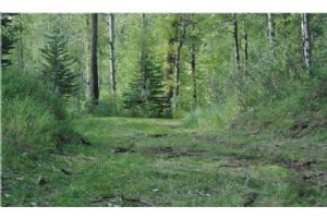. 5.86 Acres NW of Sundre  , Rural Clearwater County