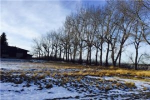282117 RGE RD 24  , Rural Rockyview County