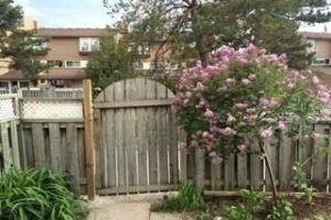 Martingrove/Finch, Toronto