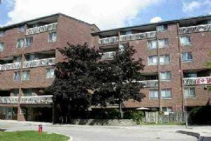 4062 Lawrence Ave E, Toronto