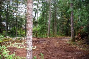 Lot 19 Mable Rd, Shawnigan Lake